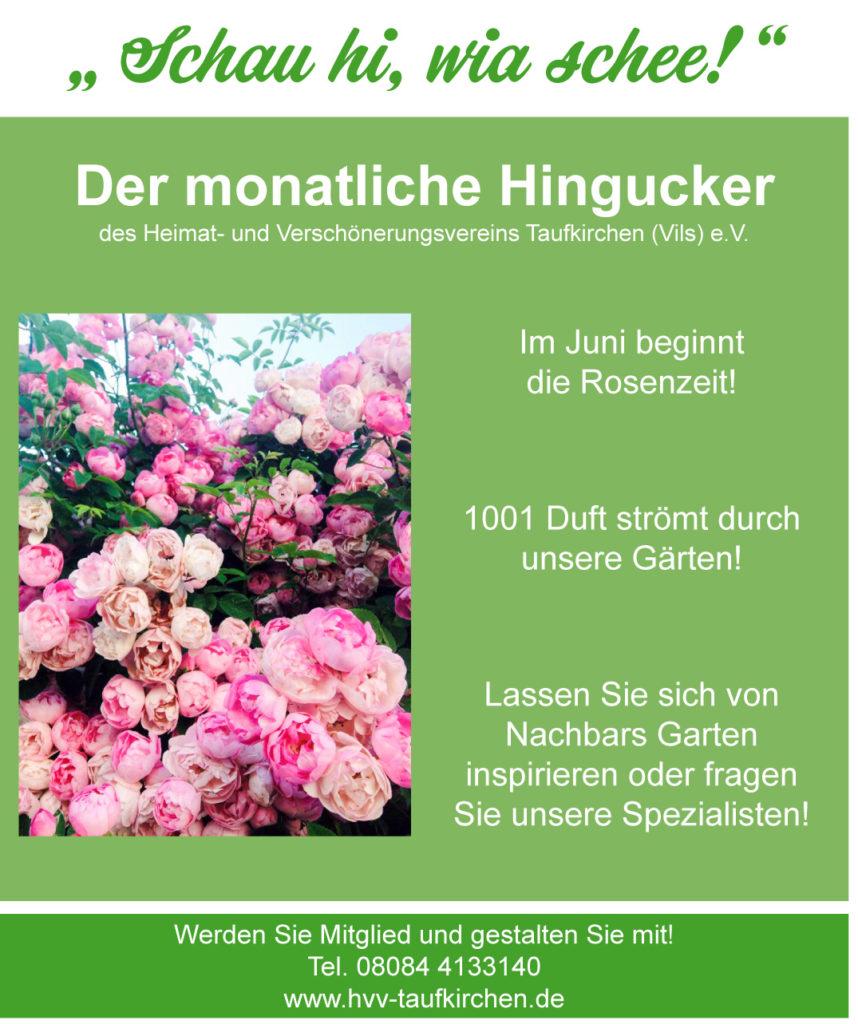 HVV-Motiv Mai 2019 Schau-hi