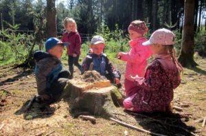 Waldgruppe Naturkindergarten